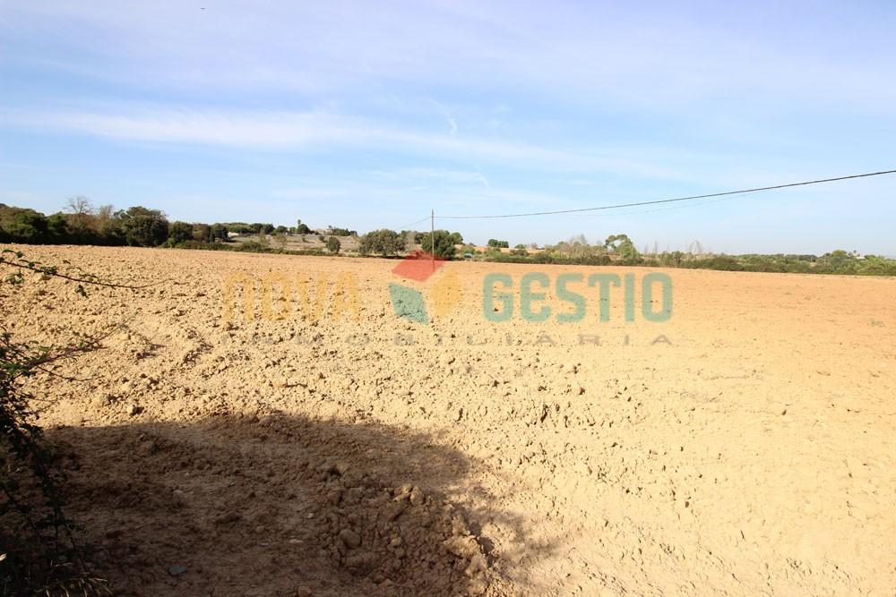 Terreno rústico edificable en venta en Felanitx : : TE402FE-VES