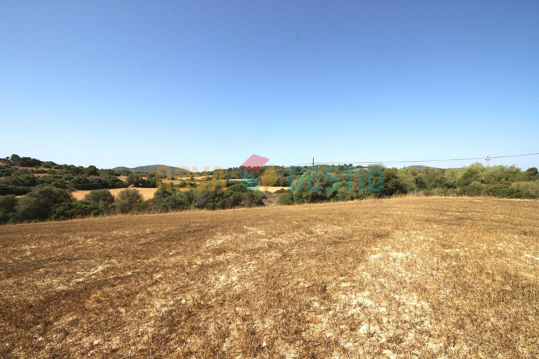 Terreno edificable con pozo en venta en Manacor : : TE746MA-VES