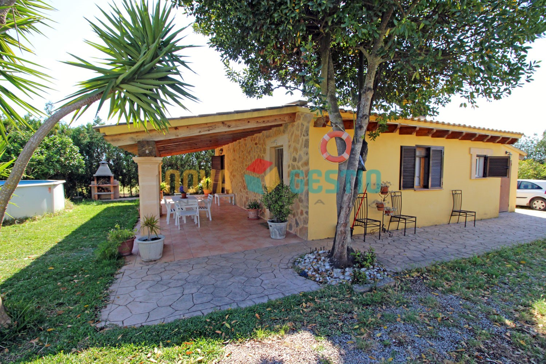 Finca rústica en venta cerca de Manacor : : FR518MA-VES