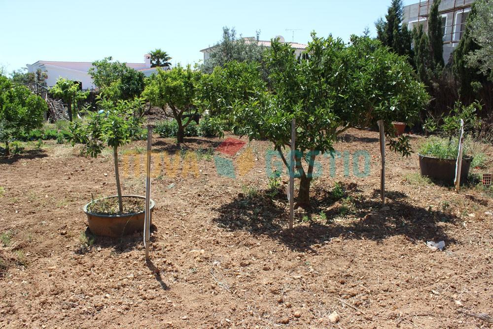 Solar en venta en Calas de Mallorca : : SO068CDM-VES