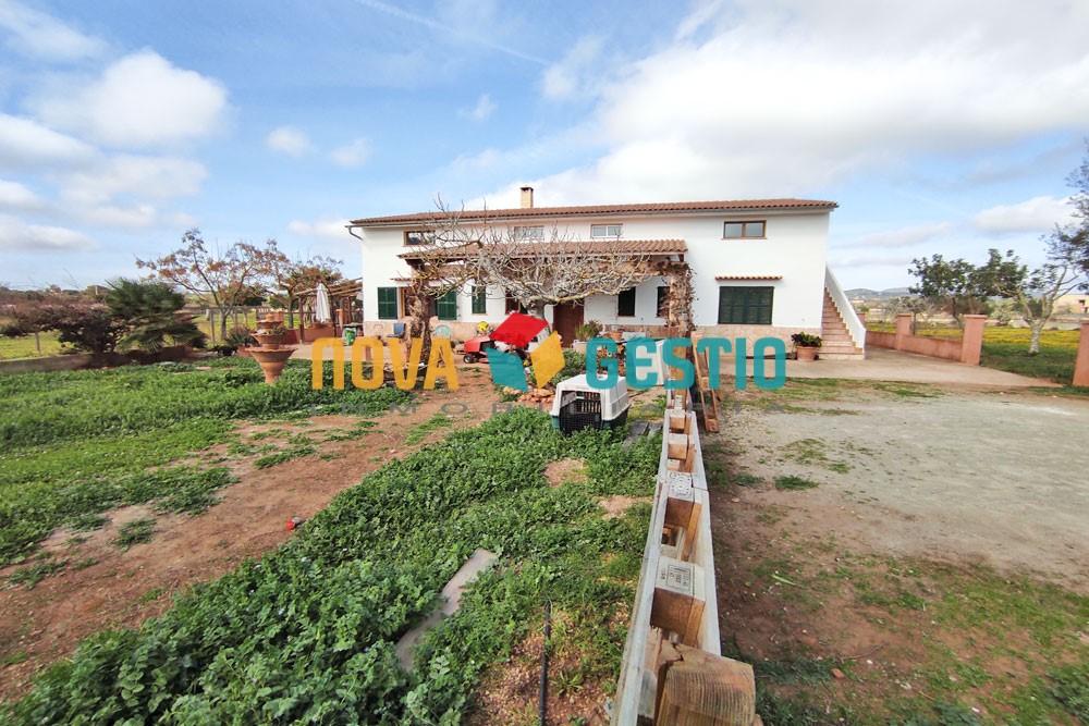 Finca rústica en alquiler en Porto Cristo : : FR981PC-AES