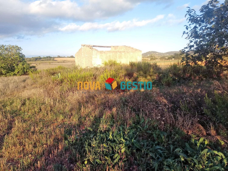 Terreno rústico en venta Manacor  : : TE1050MA-VES
